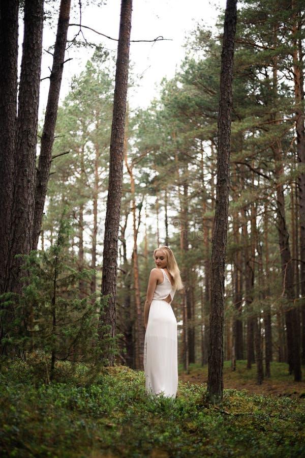 Chodz?cej pi?knej m?odej blondynki kobiety lasowa boginka w biel sukni w wiecznozielonym drewnie obraz royalty free