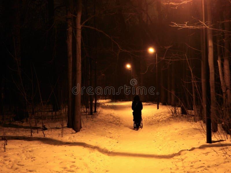 Chodzić osamotniona kobieta w wieczór parku - tylko czarna sylwetka na alei fotografia royalty free