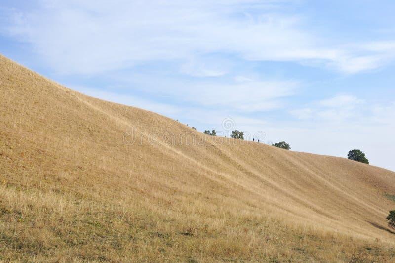 Chodzić przy wierzchołkiem Deliblato piaski fotografia stock