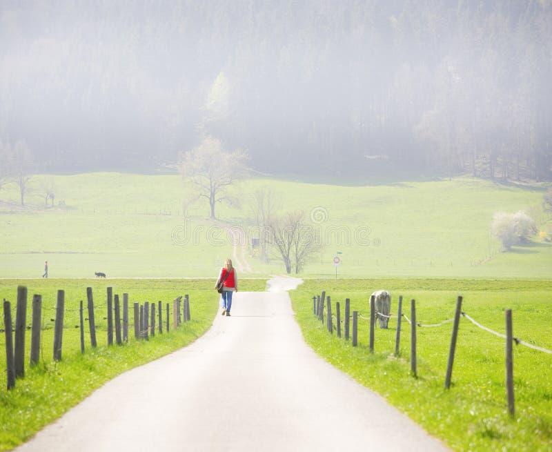Chodzić w mglistym ranku obrazy royalty free