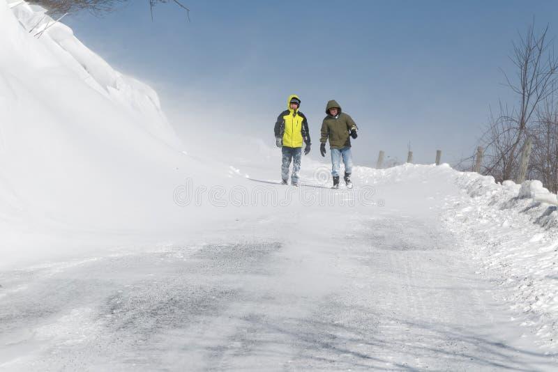 Chodzić w Podmuchowym śniegu obraz stock