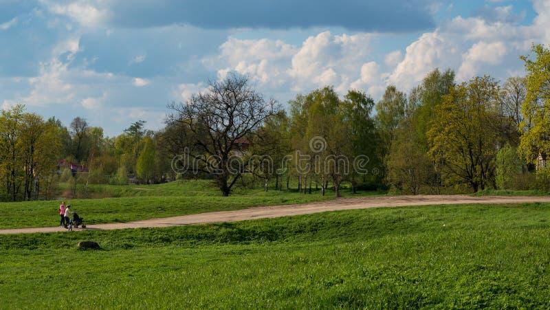 Chodzić z wózka spacerowego dwa kobietami w naturze fotografia royalty free