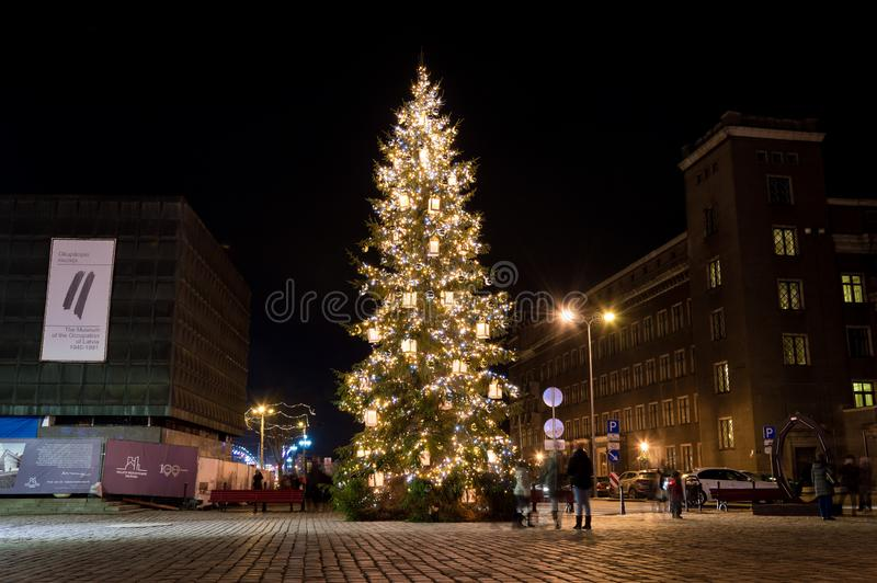 Choinka przy Ryskim, Latvia zdjęcia royalty free