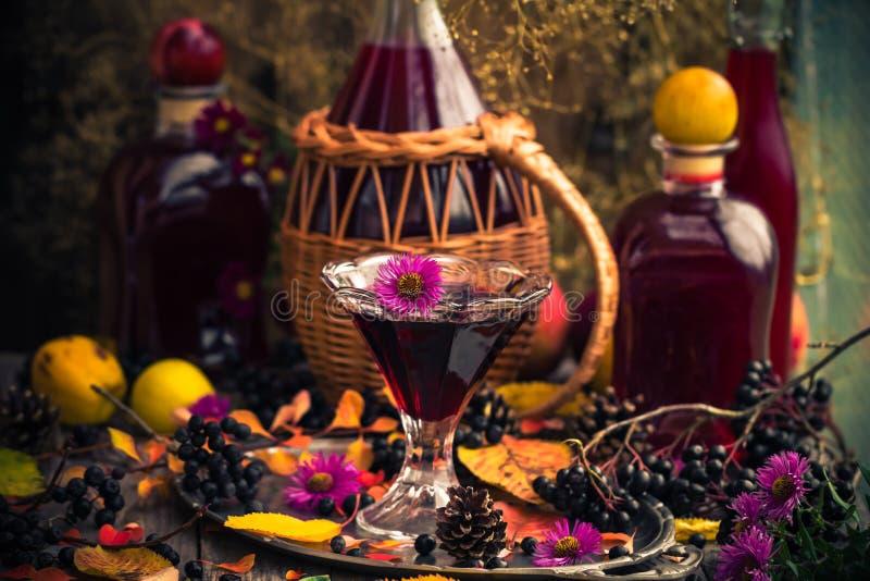 Chokeberry för tinktur för drink för gåvahöstkök sött aromatisk arkivbilder