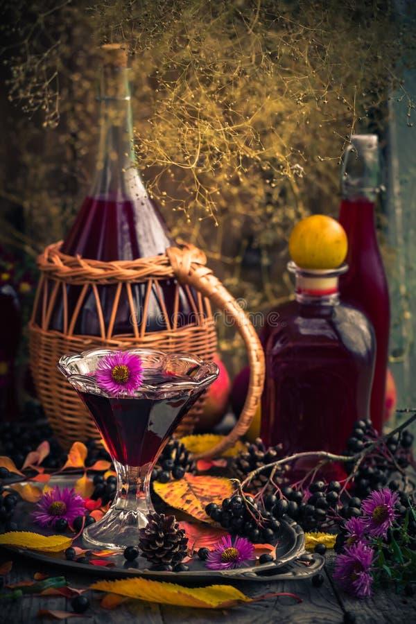 Chokeberry för tinktur för drink för gåvahöstkök sött aromatisk royaltyfri fotografi