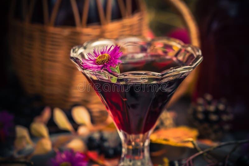 Chokeberry för tinktur för drink för gåvahöstkök sött aromatisk royaltyfri foto