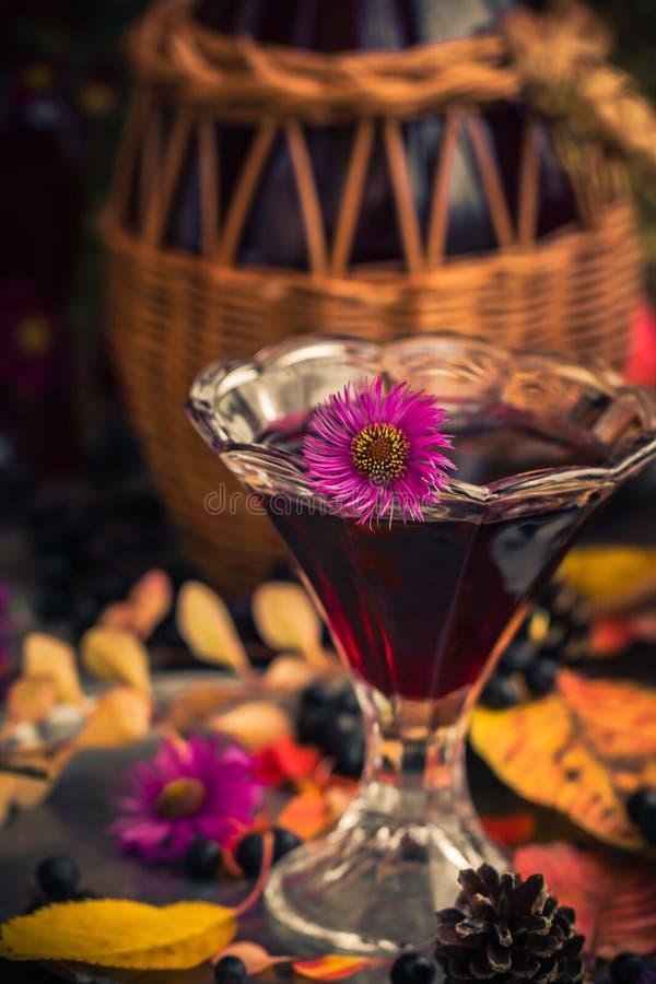 Chokeberry för tinktur för drink för gåvahöstkök sött aromatisk royaltyfri bild