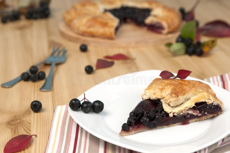 Chokeberry pie stock images