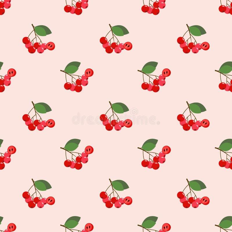 Chokeberry variopinto di rosso della frutta tropicale di immagine di sfondo senza cuciture illustrazione vettoriale