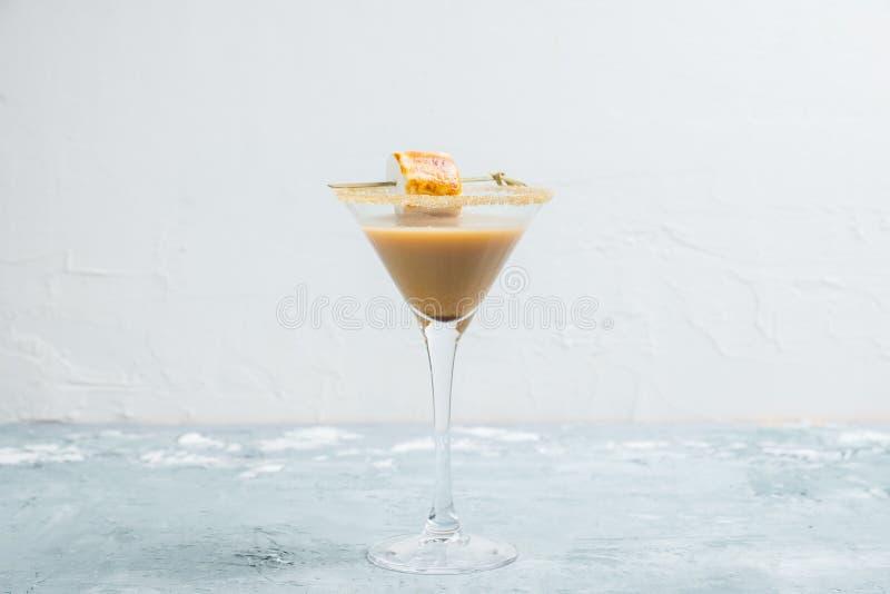 Choklad martini på den lantliga bakgrunden royaltyfria foton