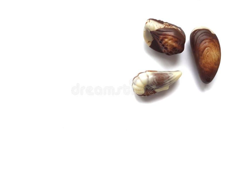 Chokladbr?nda mandlar royaltyfri bild