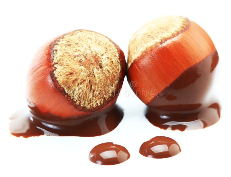 chokladhasselnöt royaltyfria foton