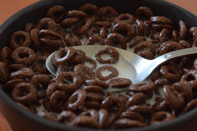 Chokladhavreflingor fotografering för bildbyråer