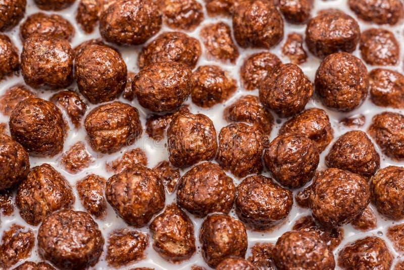 Chokladhavreflingor och mjölkar royaltyfria bilder