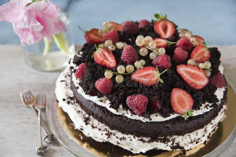 Chokladkaka med jordgubben och den röda vinbäret royaltyfria bilder