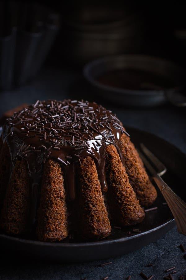 Chokladkaka som dekoreras med chokladglasyr och stänk royaltyfri foto