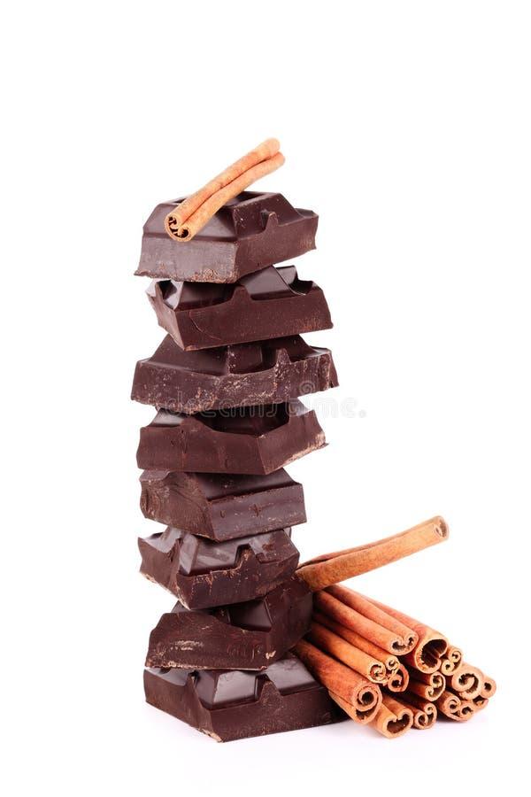 chokladkanel arkivbild
