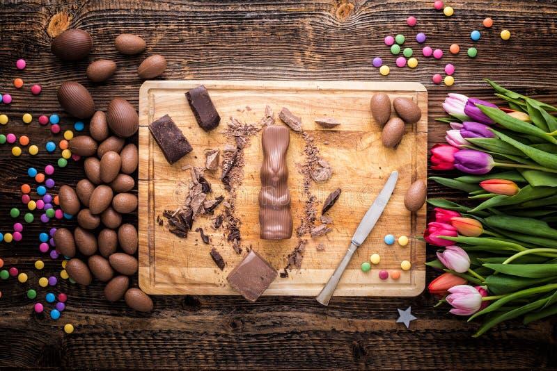 Chokladkanin och rå stycken av choklad royaltyfri fotografi