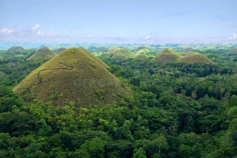 Chokladkullar, Bohols mest berömda turist- dragning, Filippinerna royaltyfri foto