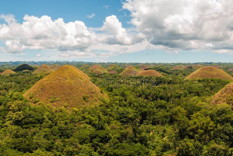 Chokladkullar i Bohol, Filippinerna Bohols mest berömda turist- dragning arkivbilder