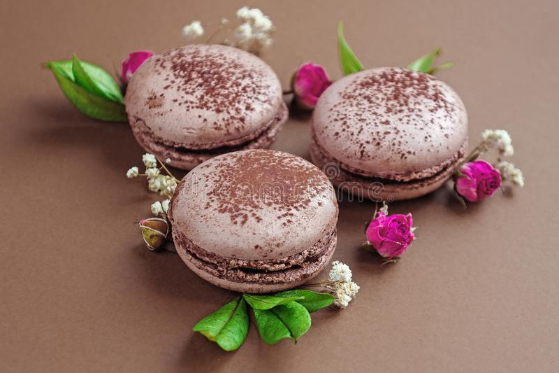 Chokladmacarons med rosor och blomningar arkivfoton