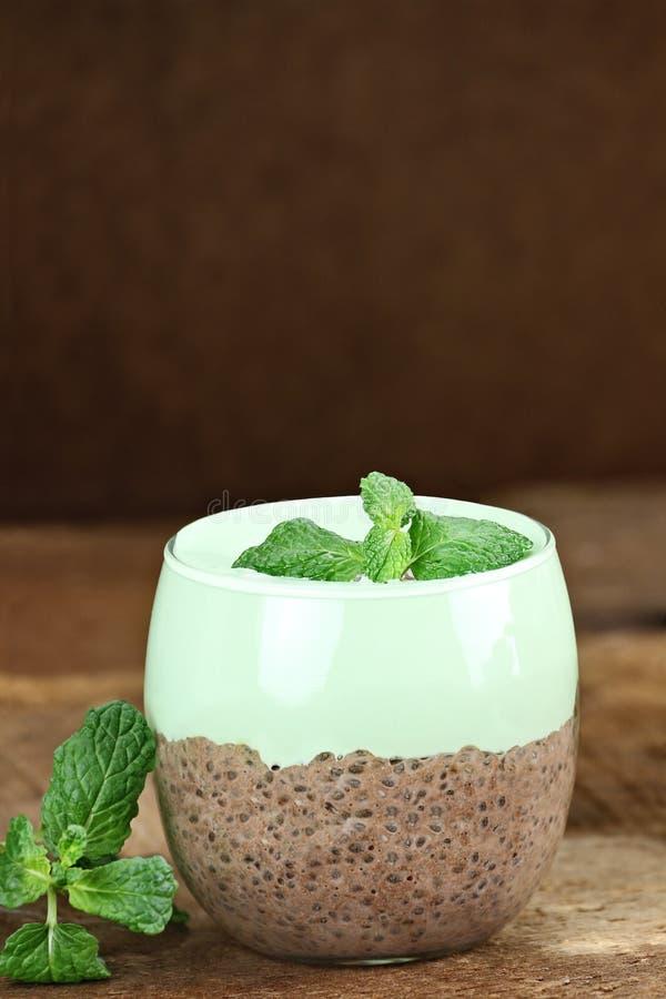 Chokladmintkaramell Chia Seed Pudding arkivfoton