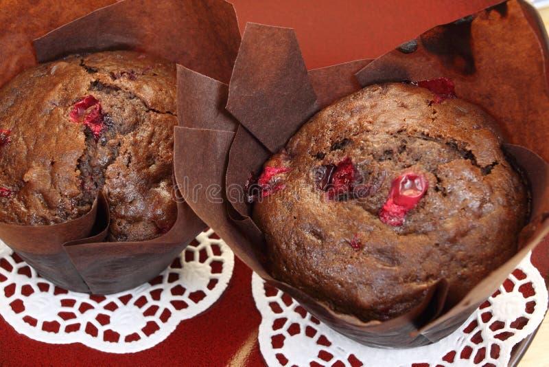 Chokladmuffiner royaltyfria bilder
