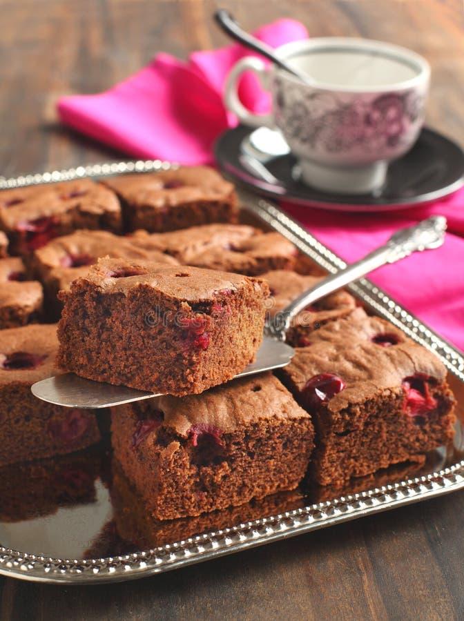 Chokladnissen med cranberryen arkivfoton
