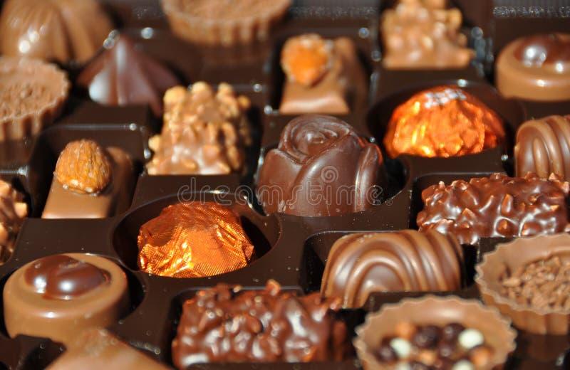 chokladschweizare arkivbilder
