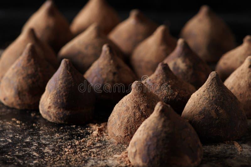 Chokladtryfflar med kakaopulver arkivbild