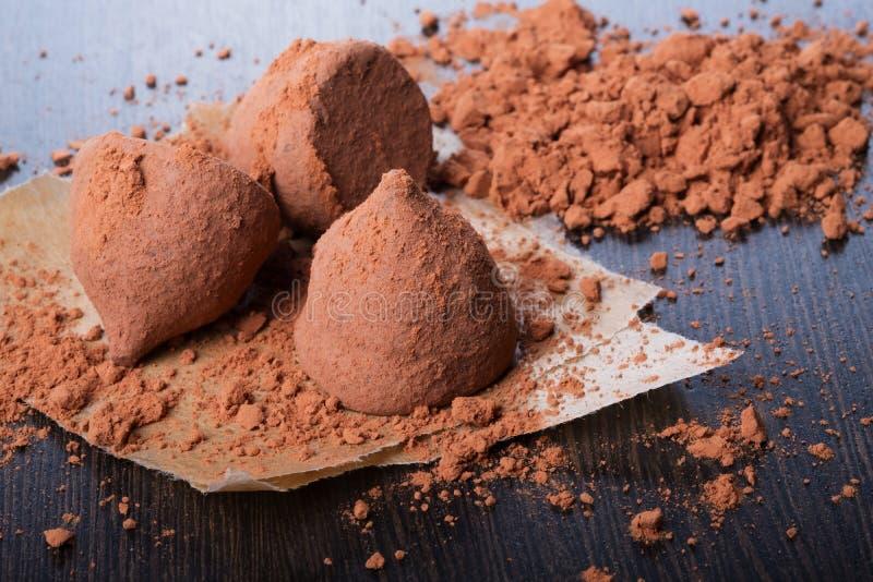 Chokladtryfflar med kakaopulver royaltyfria foton