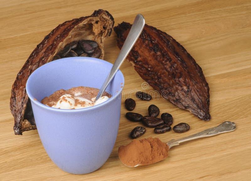 Chokolate chaud photographie stock libre de droits