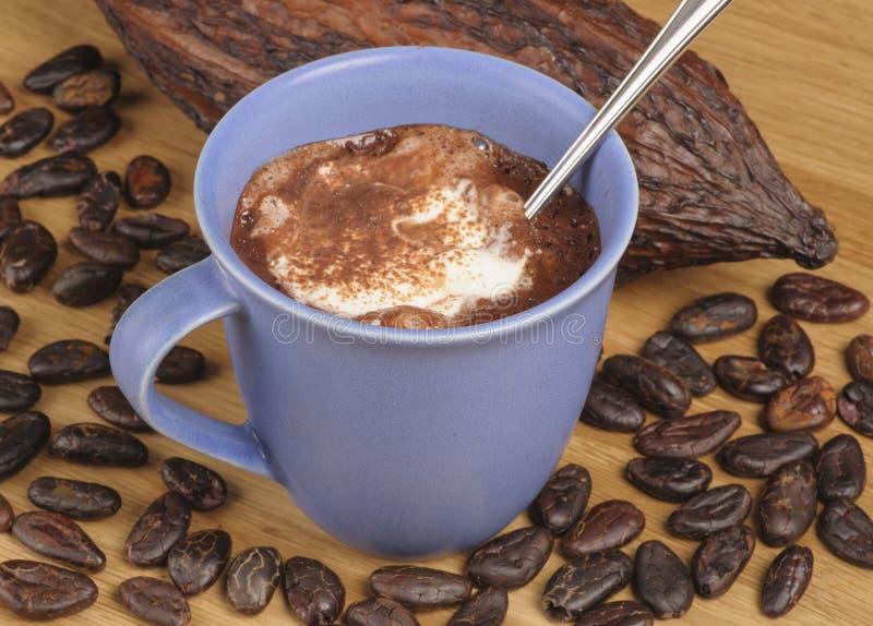 Chokolate chaud photo stock