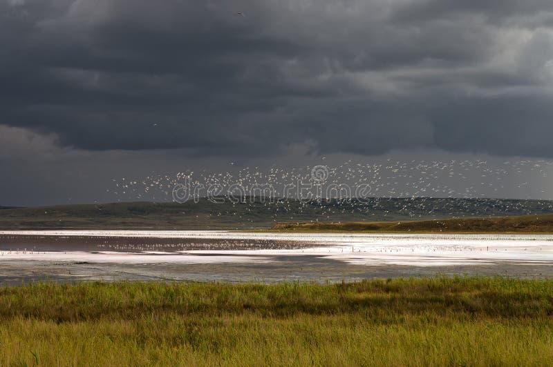 Chokrakskoe See vor dem Sturm. Chokrak. lizenzfreies stockbild