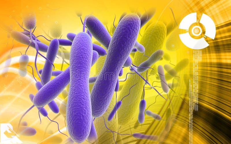 Cholerabacteriën royalty-vrije illustratie
