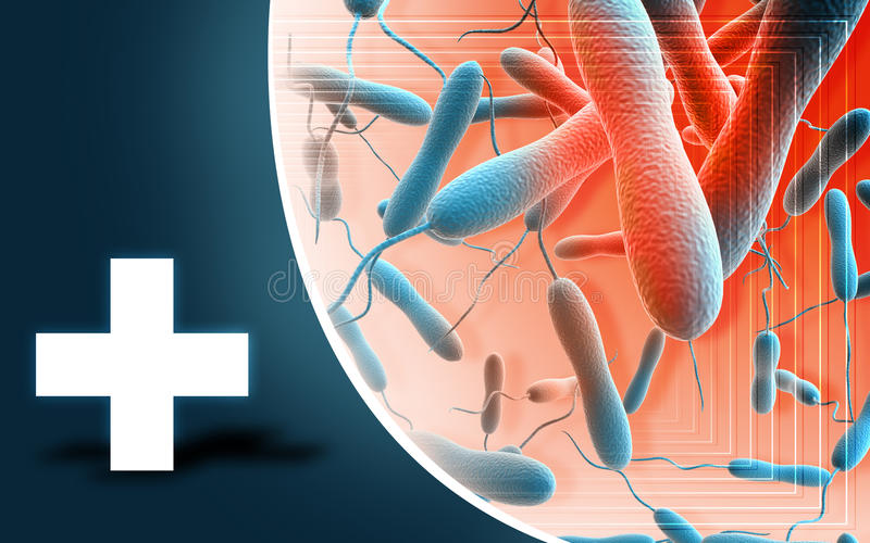 Cholerabacteriën stock illustratie
