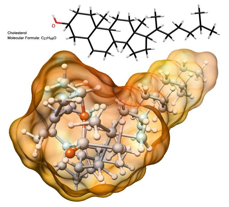 Cholesterol Molecule Royalty Free Stock Photography