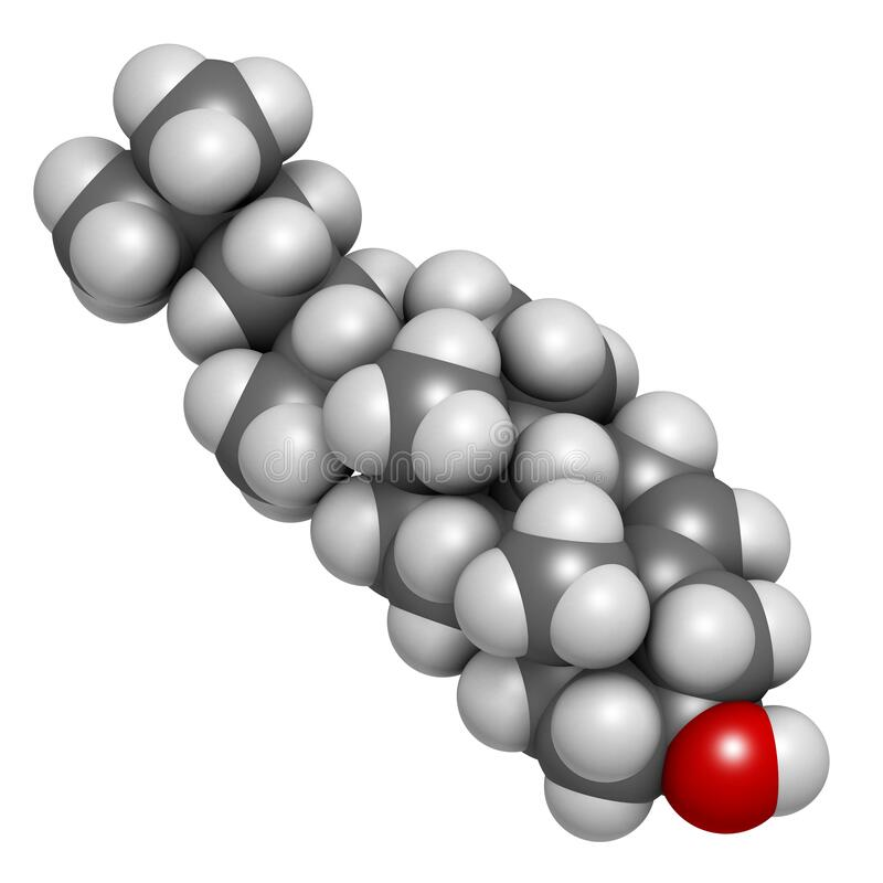 Cholesterol molecule. Essential component of cell membranes and precursor of steroid hormones, bile acids and vitamin D. Atoms are. Represented as spheres with stock illustration