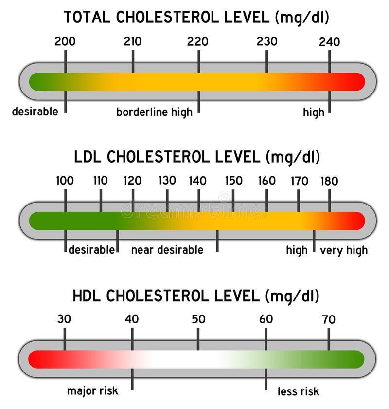 Cholesterol stock illustration