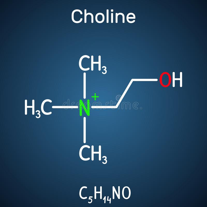 Choline vitamin-like essential nutrien molecule. It is a constituent of lecithin. Structural chemical formula on the dark blue. Background. Vector illustration stock illustration