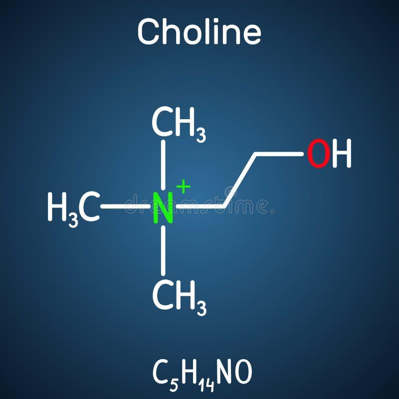 Choline vitamin-som nödvändigt nutrien molekylen Det är en konstituent av lecithin Strukturell kemisk formel p? m?rkret - bl?tt stock illustrationer