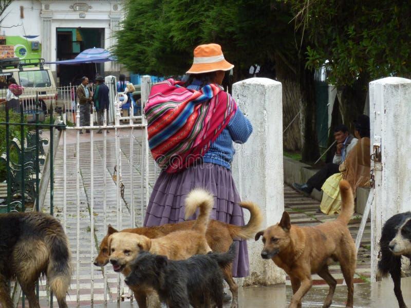 Cholitas foto de stock royalty free