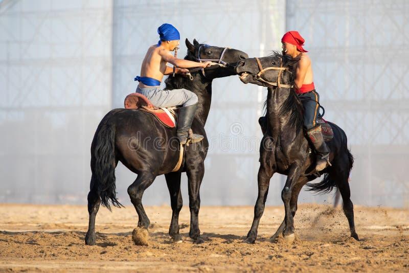 Er-enish traditional Kyrgyz horsemen wrestling competition. stock image