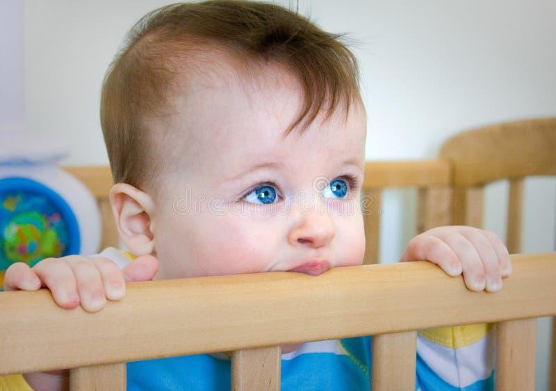 Chomps do bebé sua cama de madeira fotografia de stock