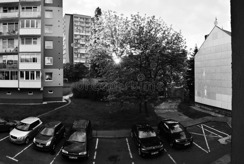 Chomutov,捷克共和国- 2019年5月17日:房子、树和汽车在城市的中心 库存图片