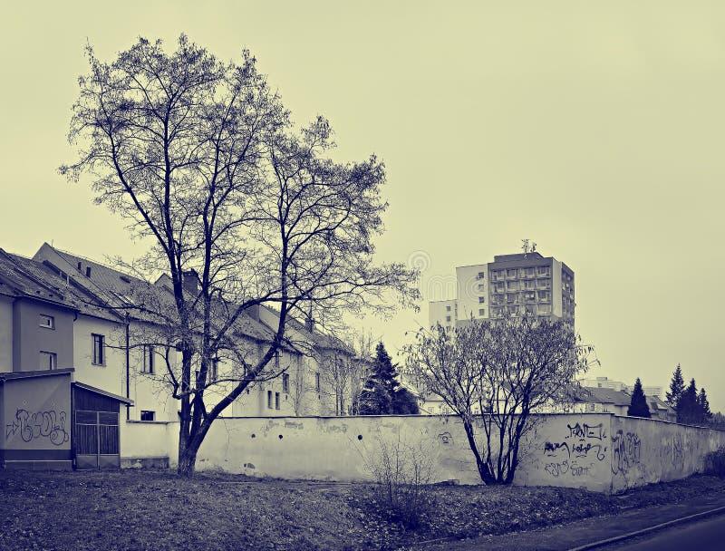 Chomutov, République Tchèque - 9 février 2018 : mur, arbres et maisons dans la rue de Lidicka pendant le jour sans soleil avec le photos libres de droits