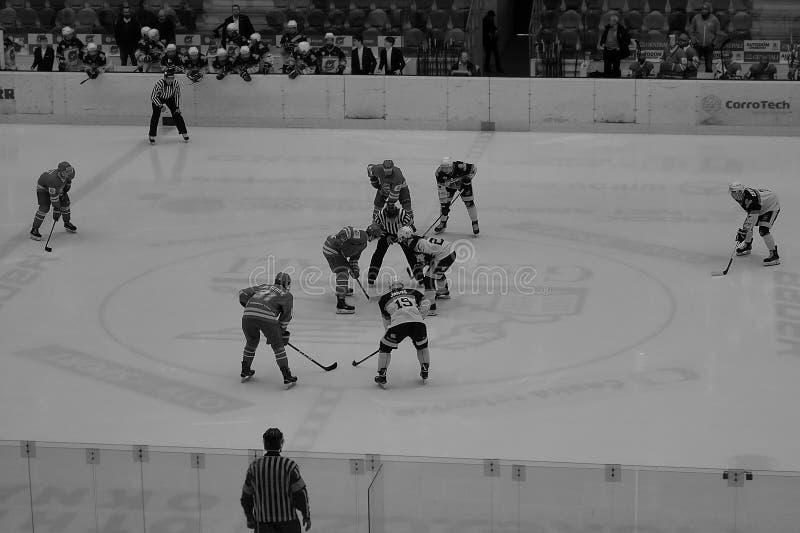 Chomutov Tjeckien - mars 29, 2019: Semifinal för ishockey U19 mellan Chomutov och Trinec - händelse för offentligt tillträde royaltyfri bild