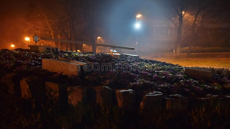 Chomutov, Tschechische Republik - 06. Januar 2020: Kvetinove Hodiny Uhr Blüte in der Nachtstadt stockfotos