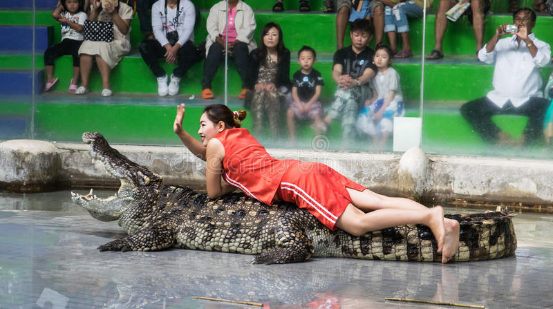 Chon Buri,泰国- 2015年1月1日:在crocodil的鳄鱼展示 库存照片