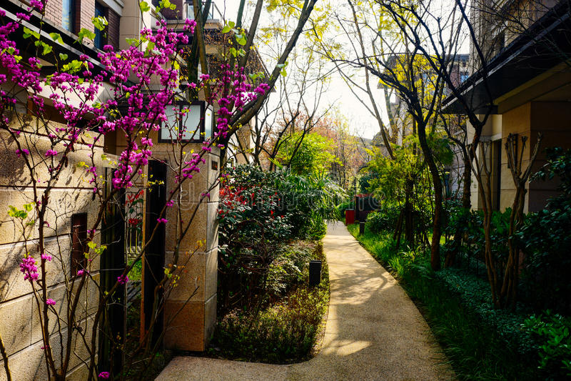 Chongqing real estate. Luxurious real estate home ,chongqing,China royalty free stock photo